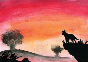A wolf at sunset by Royle-McCulloch