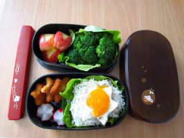 First Bento by KajaCamorra