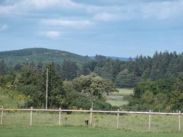 View from Auchencairn park by Fran48
