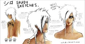 Shiro: study sketches by oo4