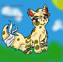 Contest Entry 4 by StarClan