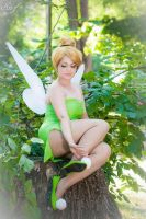 Tinkerbell by Miwako-cosplay