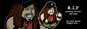 R.I.P Dimebag Darrell by Twoheaded-Dawg