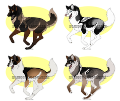 -Point adoptables 53- by Squiggy-Adoptables