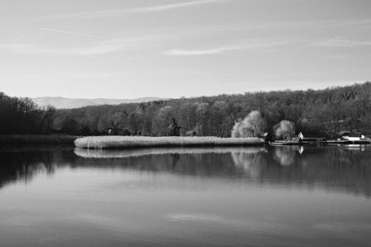 A Dead Calm by nicothoe