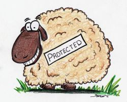 Protected Sheep II by bnspencer