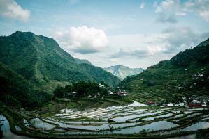 Rice Terraces by alkapon