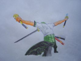 Roronoa Zoro One Piece by zorgoth120