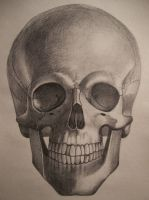skull 1 by Gh0st-0f-Me