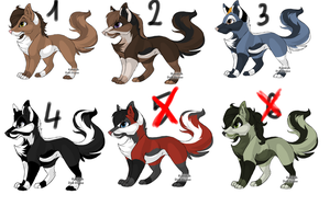Fox Point Adoptables by May-Ly