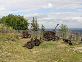 cannons by Caltha-stock