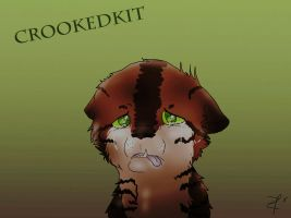 Crookedkit ::Speedpaint:: by Espenfluss