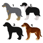 American Sentry Hound Imports (2 Available!) by TripleThreatKennels