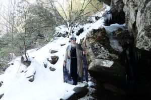 Wizard of Ice 2014-14-02 24 by skydancer-stock