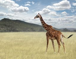 Once Upon a Time in Kenya - 3 by BenHeine