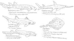 Hell Creek cartilaginous fish sketch dump by Tomozaurus