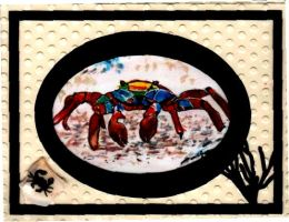 Crab watercolor by drcj10
