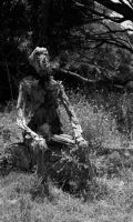 Old Man Driftwood by Rose-Bullets