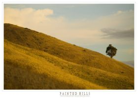 Painted Hills IV by Kvaga