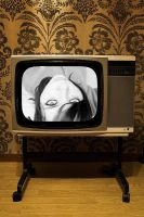 television by imprevisivel