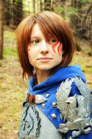 Dragon age Grey Warden by Bloodfire-Angel