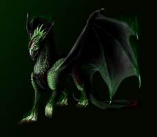 Dragon by TheSameAsOther