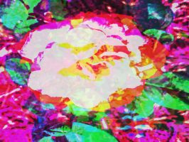 White Rose, Neon World by crysie