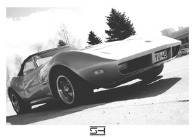 Stingray - BnW Series by Styrox-Art