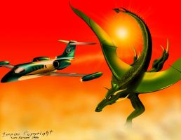 The Learjet and the Dragon by SeanFarnam