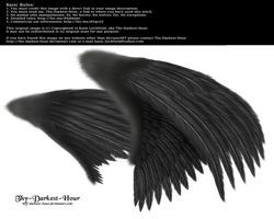 Dual Wings Black - Med. PNG by Thy-Darkest-Hour