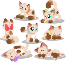 The Many Bows of Alice by equinepalette