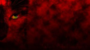 Sinister Cat Wallpaper by MisaryAshes