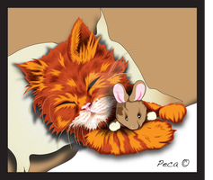 sleeping kitten by peca06