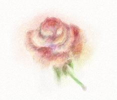 Digital watercolour rose by dwsel
