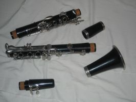 Clarinet Stock 1 by Orangen-Stock