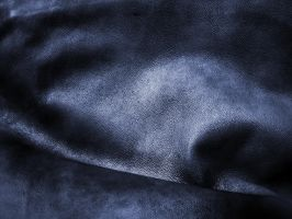 leather texture -3 by DiZa-74
