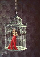 Song of a caged bird by Rousetta