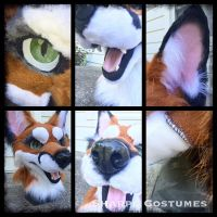 Angry fox auction: details by Sharpe19