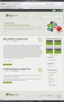 Tagpress Free wordpress theme by Ubiwebseo