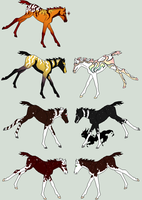 Owed Foals by RedOak-Stables