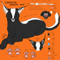 Character Sheet:Caracal by BlackCaracaL