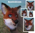 Spunky Red Fox by LilleahWest