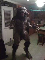 Werewolf Costume 2010-3 by CReeves76