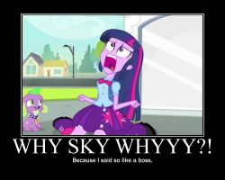 WHY SKY WHYYY?! by Sonicluvr5