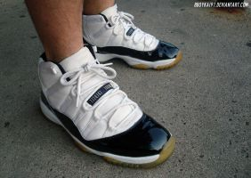 WDYWT - Air Jordan 11 Retro Concord 1 by BBoyKai91