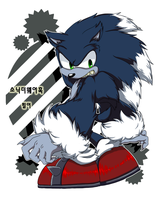 Sonic the Werehog by KoreanSonic