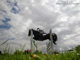 British Show Jumping 91 by mapal-stock