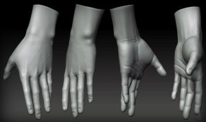 Hand_WIP_01 by peculiar86