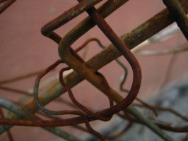 Weathered Chain Link Fence by Roxyielle