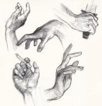 hand studies by greyfin